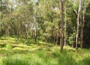 prirodni hrbitov