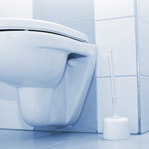 toilette-1-300x300